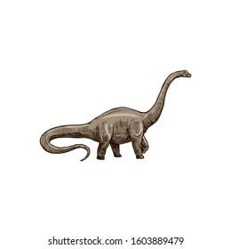 Sauropod dinosaur isolated Brachiosaurus sketch. Vector Camarasaurus, prehistoric extinct animal