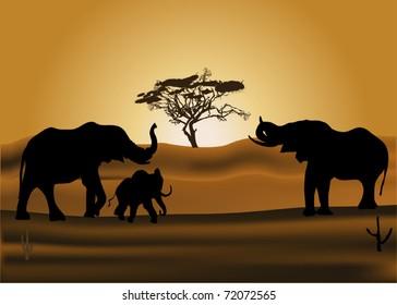 savanna illustration with elephants at sunset