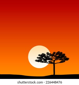 Savanna landscape at sunset. Vector illustration.