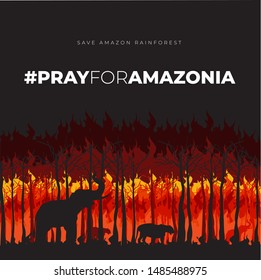 Save Amazonia Forest in Brazil From Fire Disaster Vector Illustration 2019