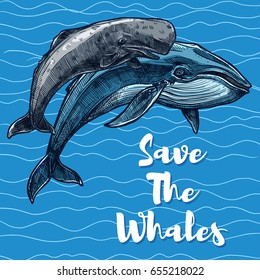 Save whales poster for sea animal saving concept. Vector design of sperm whale and cachalot mammals swimming on blue water waves for underwater fauna and wild nature poaching protection