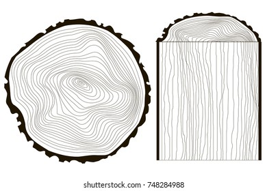 Saw cut tree trunk vector tree, annual rings monochrome stock vector illustration