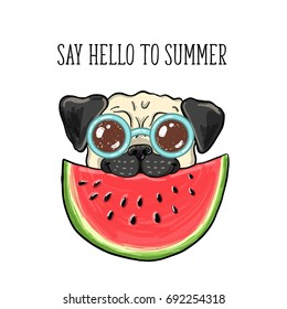 Say hello to summer. Vector illustration with happy vacation pug dog in sunglasses, eating watermelon