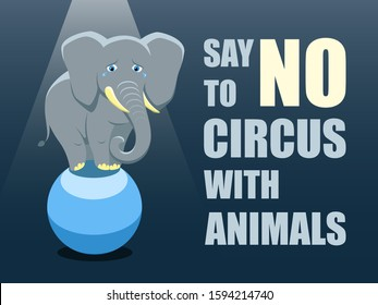 Say no to circus with animals. Poster against abuse animals in circuses. Banner with text and grey elephant on the ball on blue background. Problem of exploitation of wild animals in circuses. Flat.
