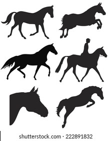 Scalable vector silhouettes of horses and rider in different action poses.