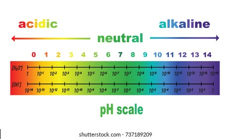 scale of ph value for acid and alkaline solutions, vector isolated