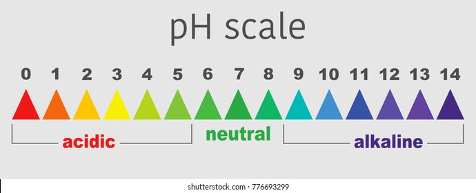 scale of ph value for acid and alkaline solutions, infographic acid-base balance. scale for chemical analysis acid base. vector illustration isolated or grey background