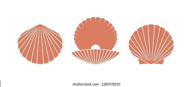 Scallop logo. Isolated scallop  on white background. Set
