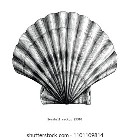 Scallops Seashell vintage clip art