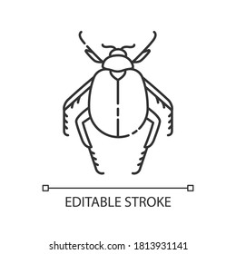 Scarab beetle pixel perfect linear icon. Small arthropod, egyptian bug, desert inhabitant. Thin line customizable illustration. Contour symbol. Vector isolated outline drawing. Editable stroke