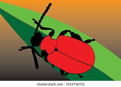 scarlet beetle in a continuous pattern.