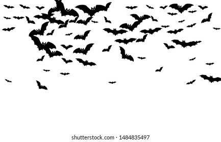 Scary black bats flock isolated on white vector Halloween background. Flittermouse night creatures illustration. Silhouettes of flying bats vampire Halloween symbols on white.