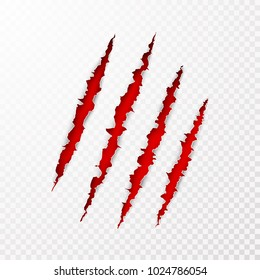 Scary leceration paper surface. Wild animal claws scratch texture with red background. Torn paper edge. Isolated vector illustration