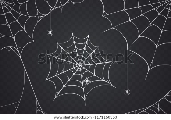 Scary Spider Web Vector Illustration White Stock Vector