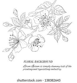 Scatch of spring sakura. Vector illustration.