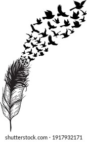 scattered feather with flying birds
