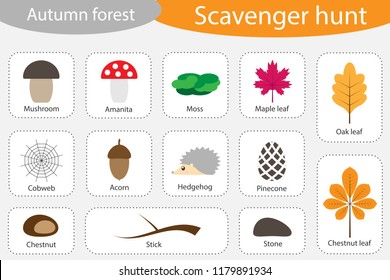 Scavenger hunt, autumn forest, different colorful autumn pictures for children, fun education search game for kids, development for toddlers, preschool activity, set of icons, vector illustration