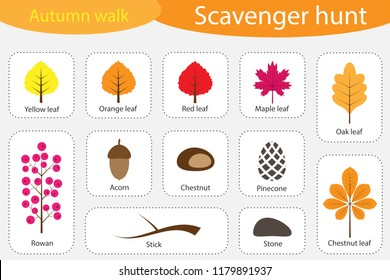 Scavenger hunt, autumn walk, different colorful autumn pictures for children, fun education search game for kids, development for toddlers, preschool activity, set of icons, vector illustration