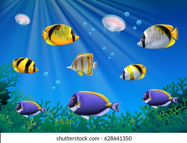 Scene with colorful fish swimming underwater illustration