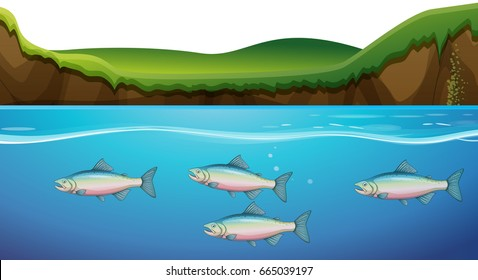 Scene with fish under the river illustration