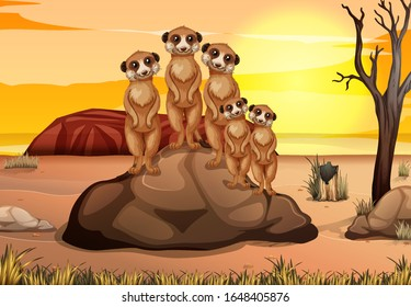 Scene with many meerkats standing on the rock illustration