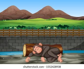 Scene with sad monkey in the zoo illustration