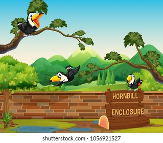 Scene with three hornbill birds in zoo illustration
