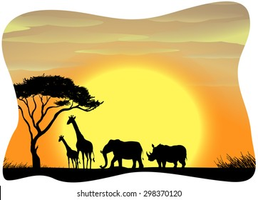 Scenery of wild animals in Africa during the sunset