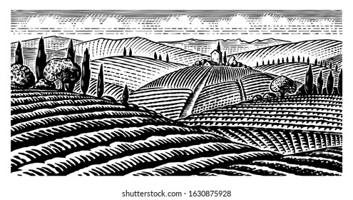 Scenic view of vineyards. Fields and hills of Tuscany. Panoramic vine plantation in Chianti. French or Italian engraved landscape. Hand drawn monochrome vintage horizontal sketch.