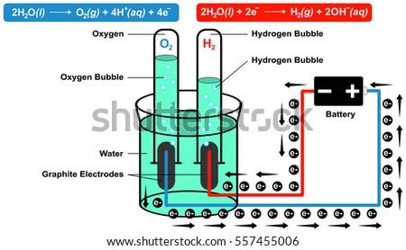 Brilliant Schematic Diagram Represents Electrolytic Production Hydrogen Stock Wiring Database Aboleterrageneticorg