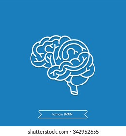 Schematicmedical illustration of human brain. Made in vector in lineal flat style. Logo brain. Vector human logo brain.