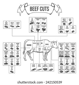 Scheme of Beef cuts for steak and roast. Vector illustration