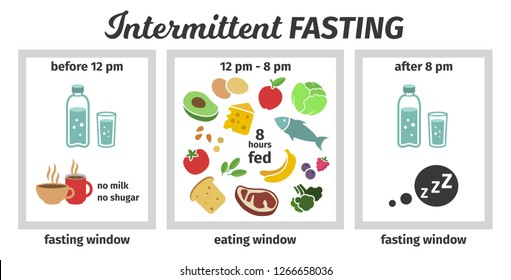 Scheme and concept. eating and fasting windows. Vector illustration. Infographic