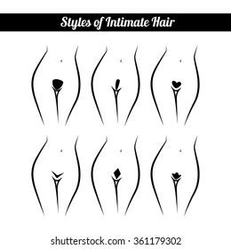 scheme of hair removal bikini zone, intimate haircut