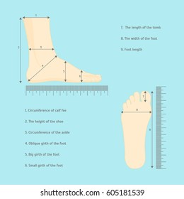 Scheme for Square Measure Human Feet Shoe Size for Business and Sales. Vector illustration