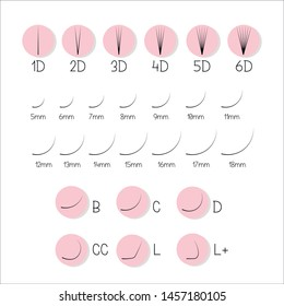 scheme of volume eyelash extensions. Options volume and length of false eyelashes. 1D, 2D, 3D, 4D, 5D, 6D. Tutorials. The lengths of the and versions of the curl of your lashes B, C, D, CC, l, l+