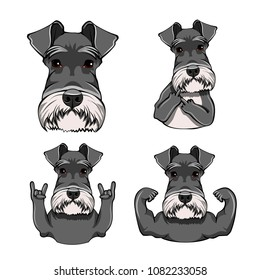 Schnauzer Dog. Rock gesture, face, middle finger, horns, head, muzzle. Schnauzer set. Vector illustration.
