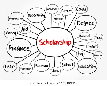 Scholarship mind map flowchart, education concept for presentations and reports