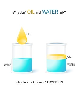 school experiment: Why don't OIL and WATER mix? Vector illustration for education and science use. water and oil - liquids that are normally immiscible (unmixable or unblendable).