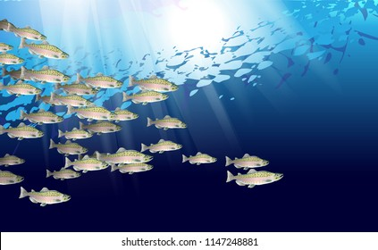 School of pink salmon fish. Marine life. Vector illustration optimized from to be used in background design, decoration.
