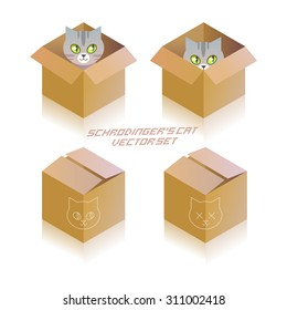 Schrodinger's cat in the box. Vector icon set