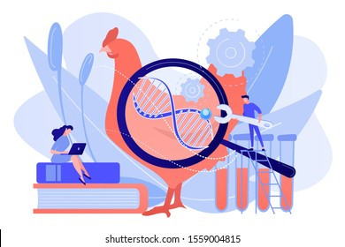Scientists working with huge DNA of a chicken. Genetically modified animals, genetically modified animal experiments concept on white background. Pinkish coral bluevector isolated illustration
