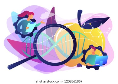 Scientists working with magnifier and apple DNA. Genetically modified foods, GM foods and genetically engineered foods concept on white background. Bright vibrant violet vector isolated illustration