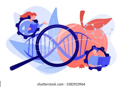 Scientists working with magnifier and apple DNA. Genetically modified foods, GM foods and genetically engineered foods concept on white background. Pinkish coral bluevector isolated illustration