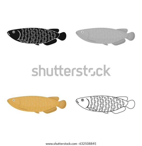 Scleropages fotmosus fish icon cartoon. Aquarium fish icons from the sea,ocean life cartoon.