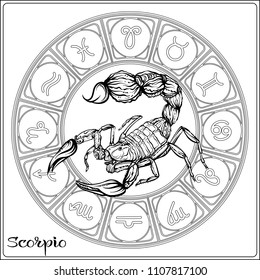 Scorpio Zodiac sign. Astrological horoscope collection. Outline vector illustration. Outline hand drawing coloring page for the adult coloring book.