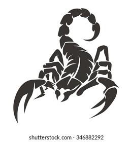 Scorpion Black