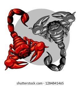 scorpion for decoration set. scorpion logo