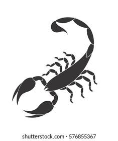Scorpion logo. Isolated scorpion on white background. EPS 10. Vector illustration