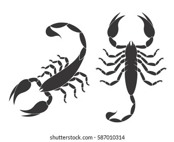 Scorpion set. Isolated scorpion on white background. EPS 10. Vector illustration